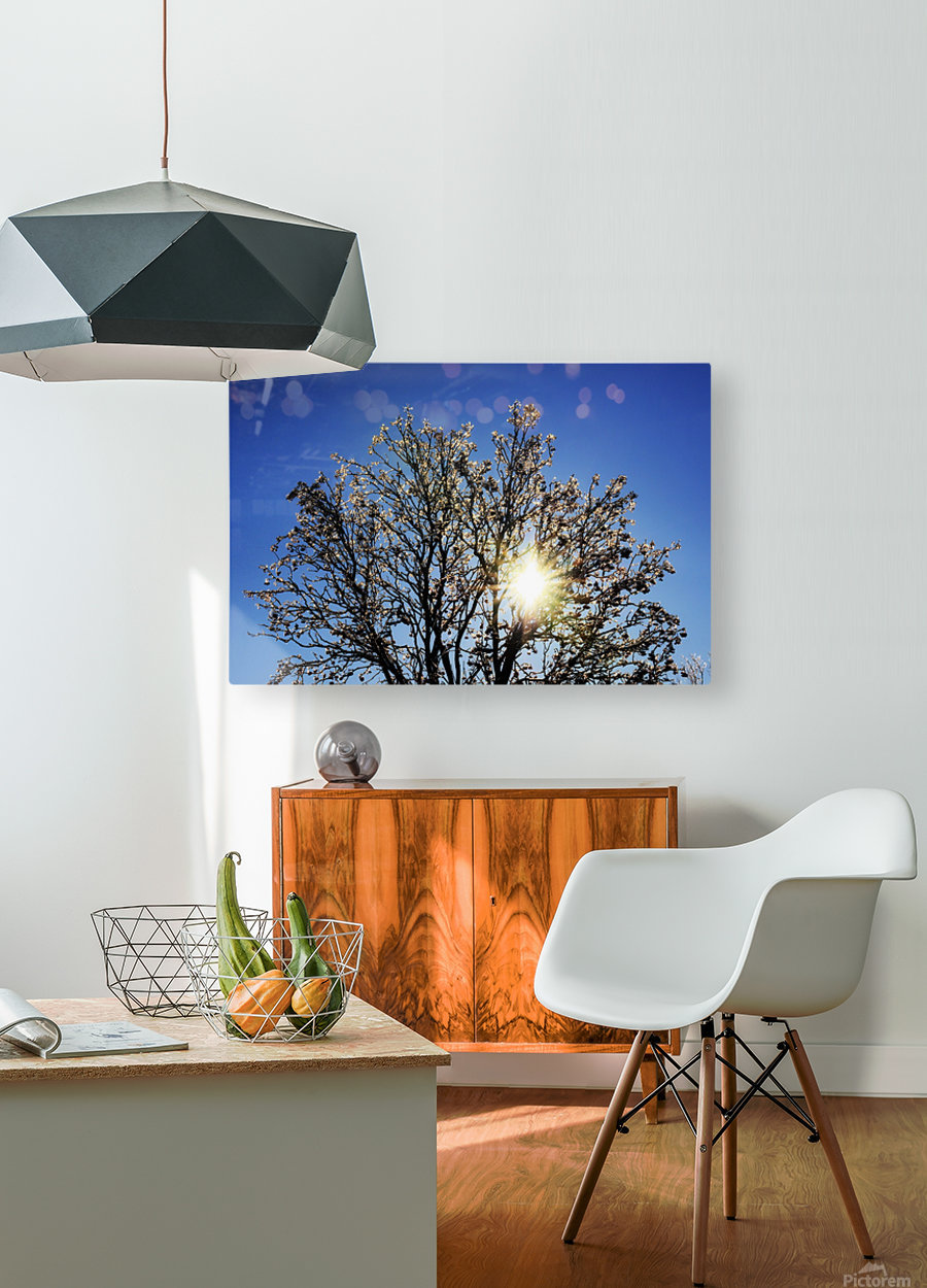 Eblouissant  HD Metal print with Floating Frame on Back