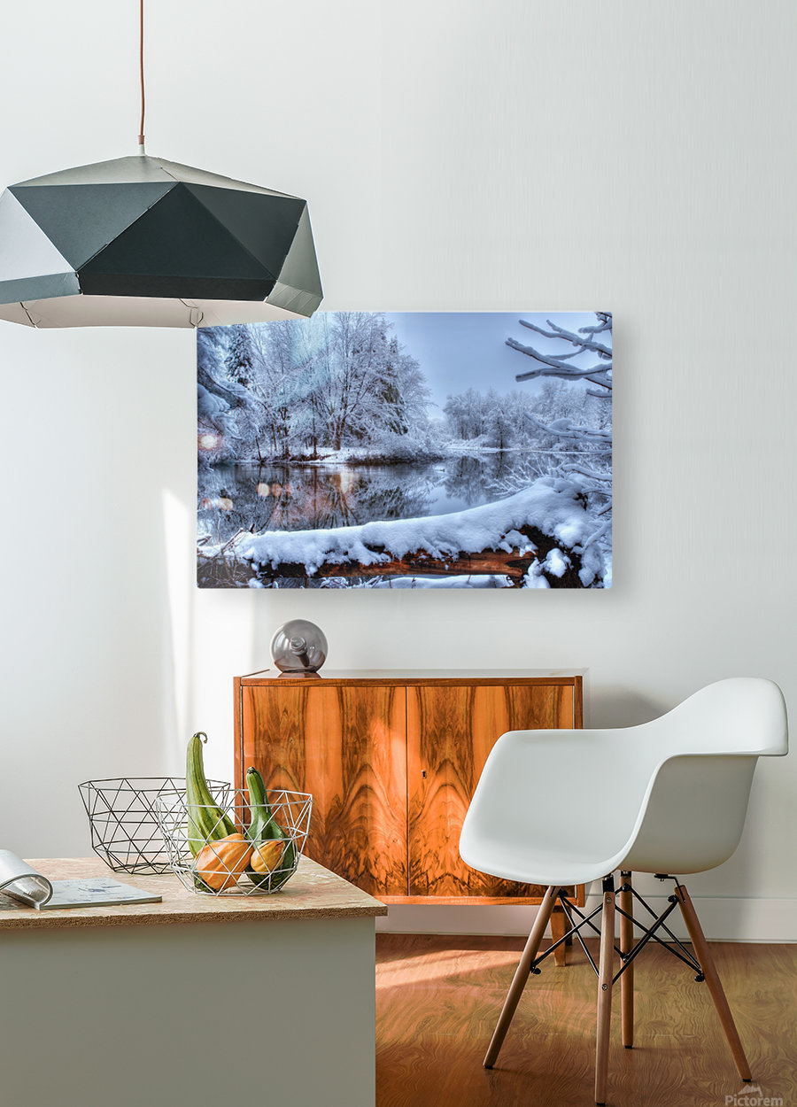 Feerie de l hiver  HD Metal print with Floating Frame on Back