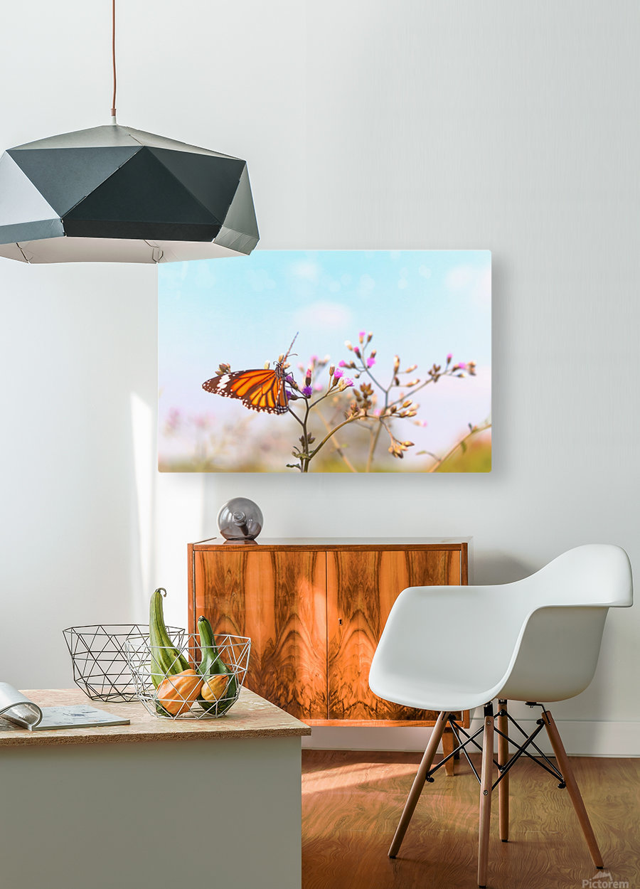 Fluttering Butterfly  HD Metal print with Floating Frame on Back