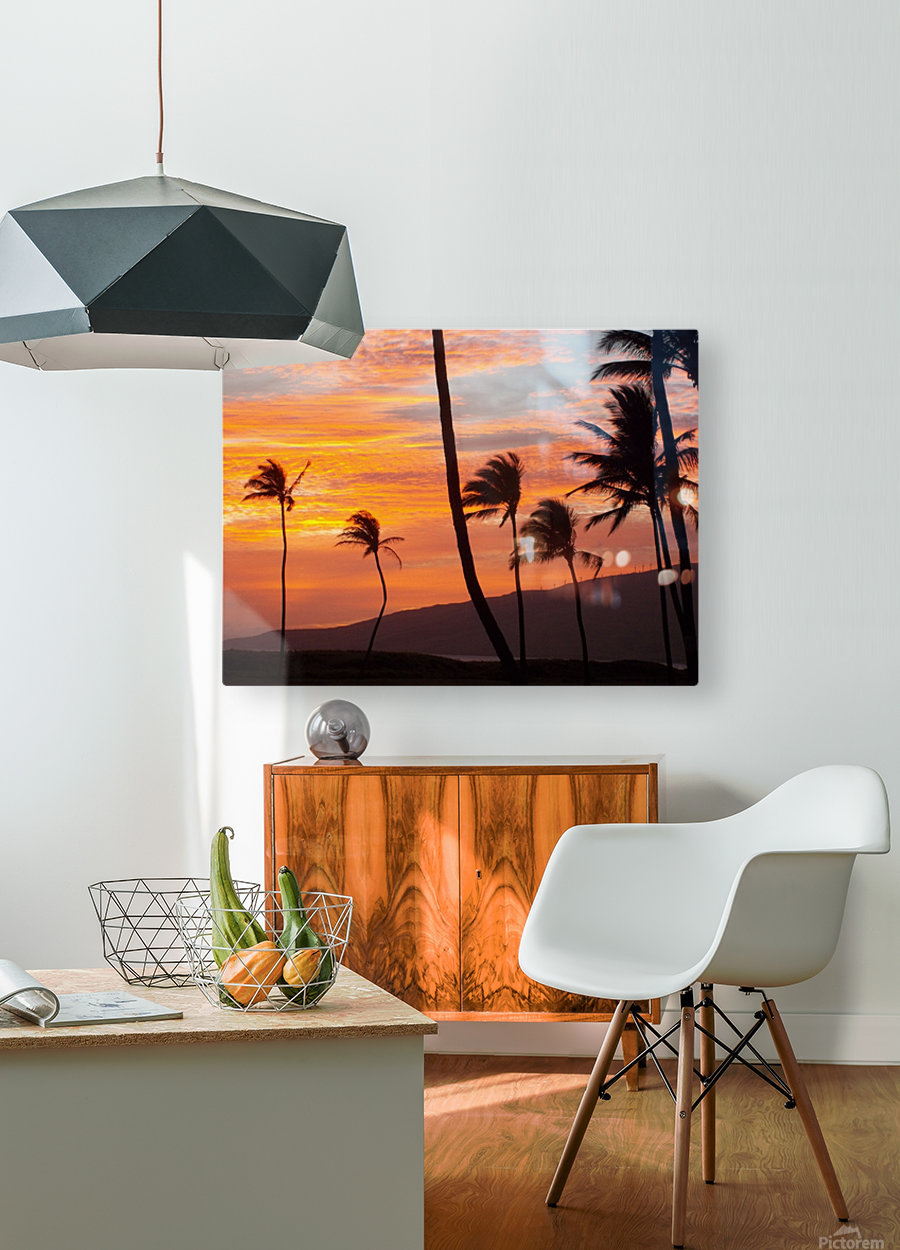 Maui Palms  HD Metal print with Floating Frame on Back
