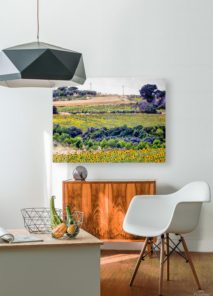 Sunflower Landscape  HD Metal print with Floating Frame on Back
