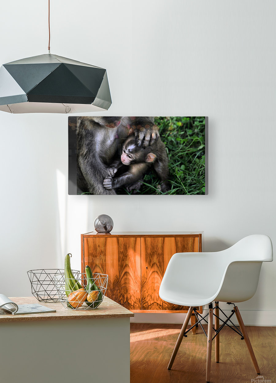 Family time  HD Metal print with Floating Frame on Back
