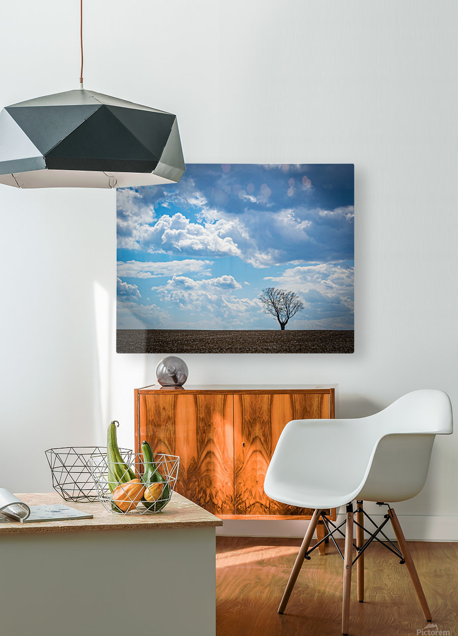 Alone With My Thoughts  HD Metal print with Floating Frame on Back