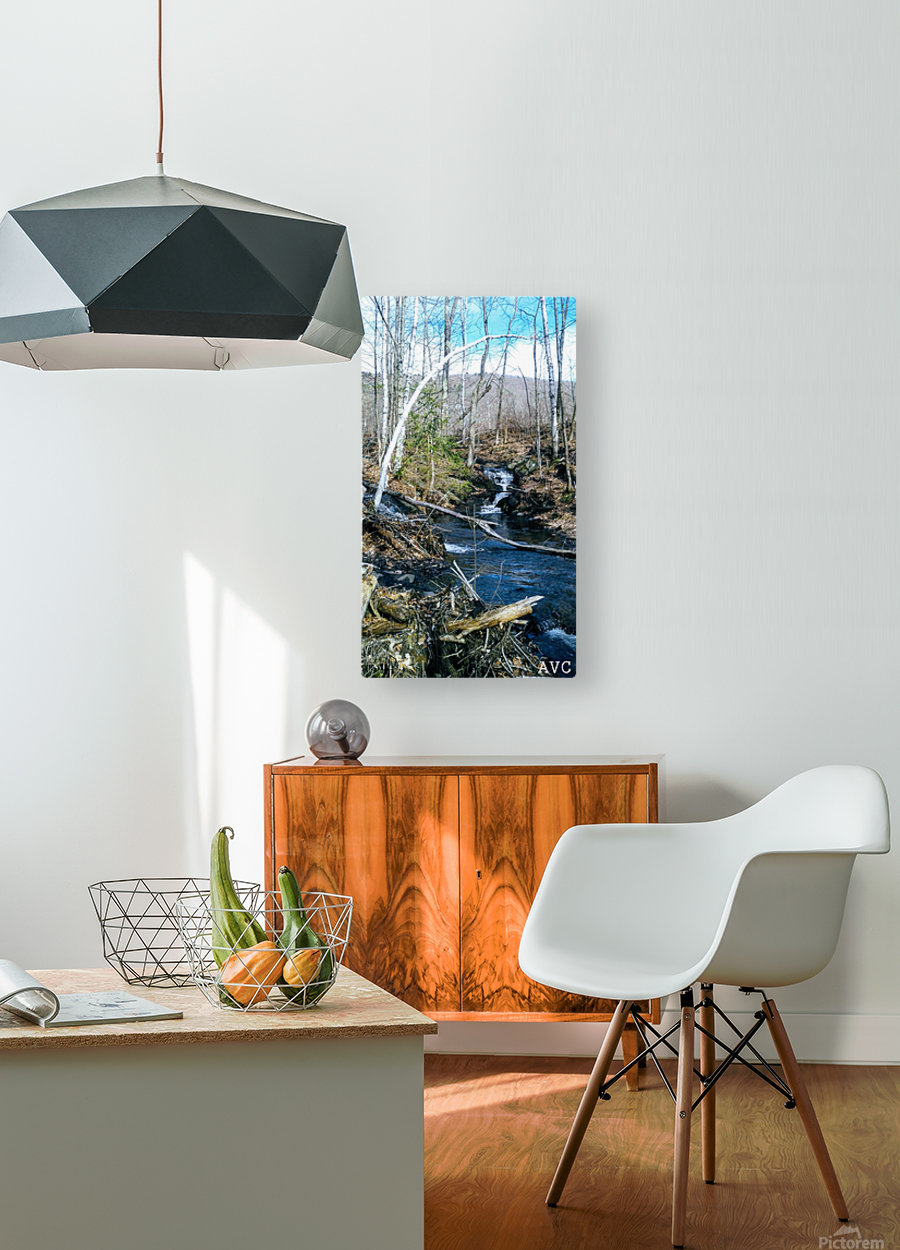 Brook through the Forest  HD Metal print with Floating Frame on Back