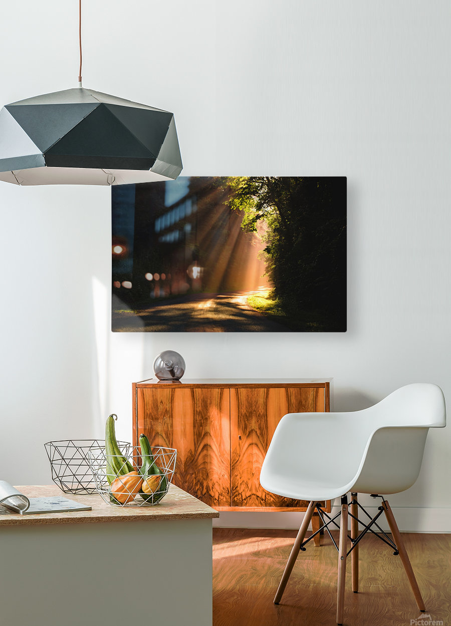 Morning Rays  HD Metal print with Floating Frame on Back