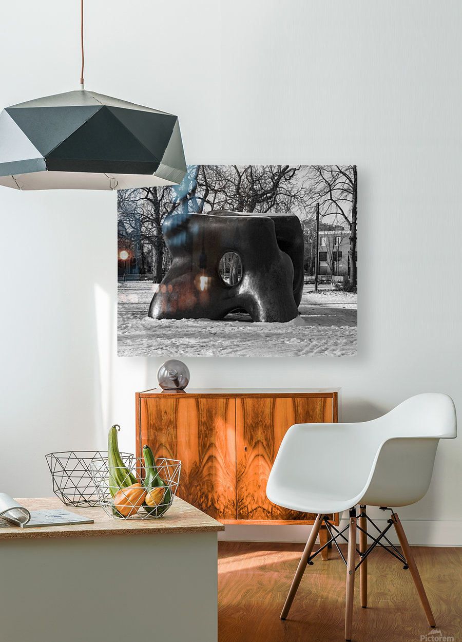 Two Large Forms at Grange Park 1  HD Metal print with Floating Frame on Back