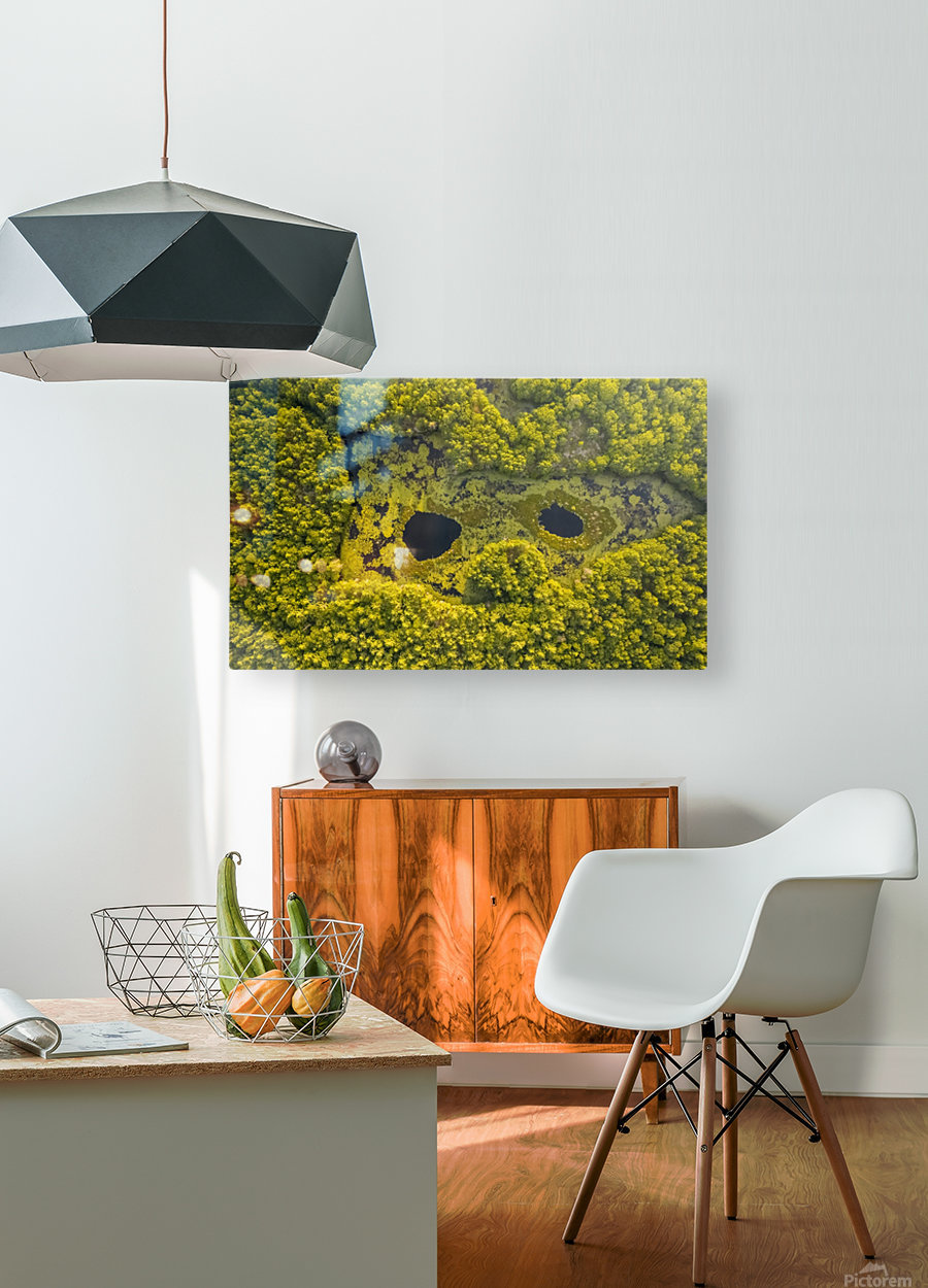 Look from below 01  HD Metal print with Floating Frame on Back