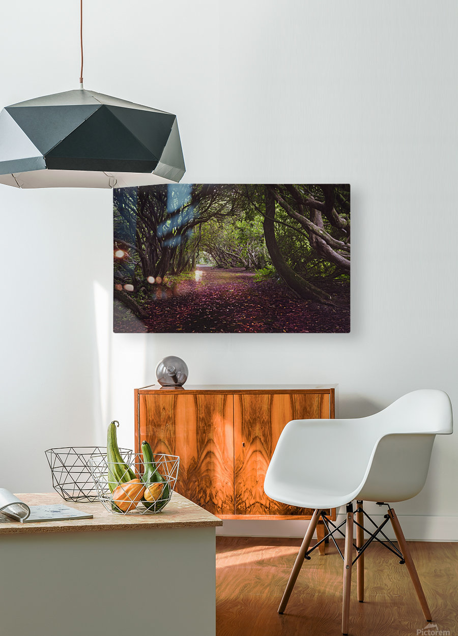 Rhododendron arched walkway  HD Metal print with Floating Frame on Back