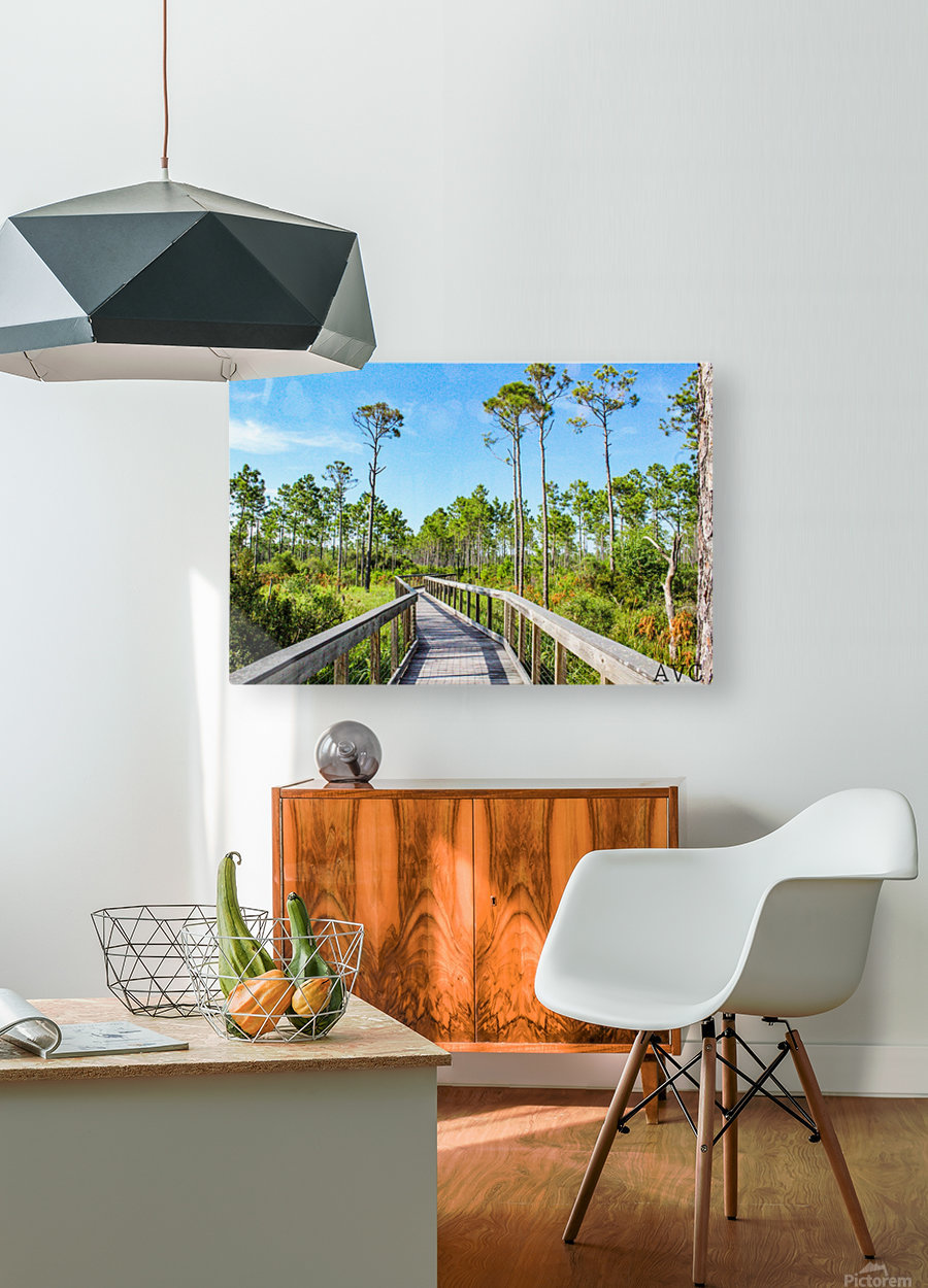 Bridge Walk  HD Metal print with Floating Frame on Back