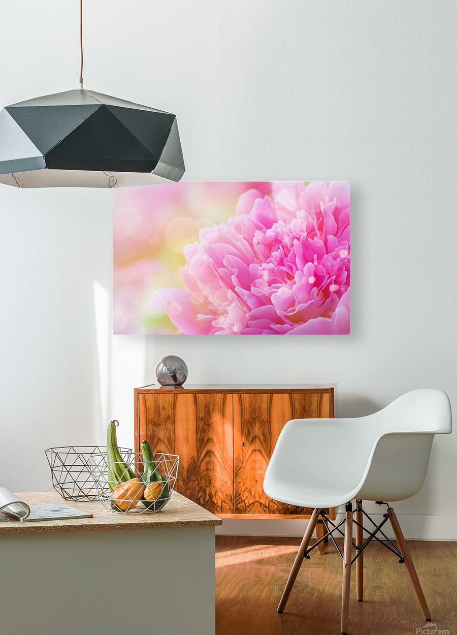 Pink Dream  HD Metal print with Floating Frame on Back