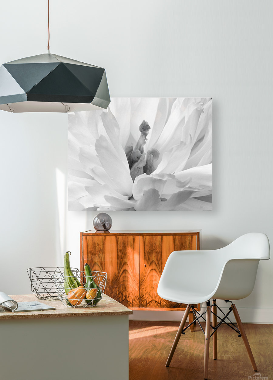 Peony III Black and White  HD Metal print with Floating Frame on Back