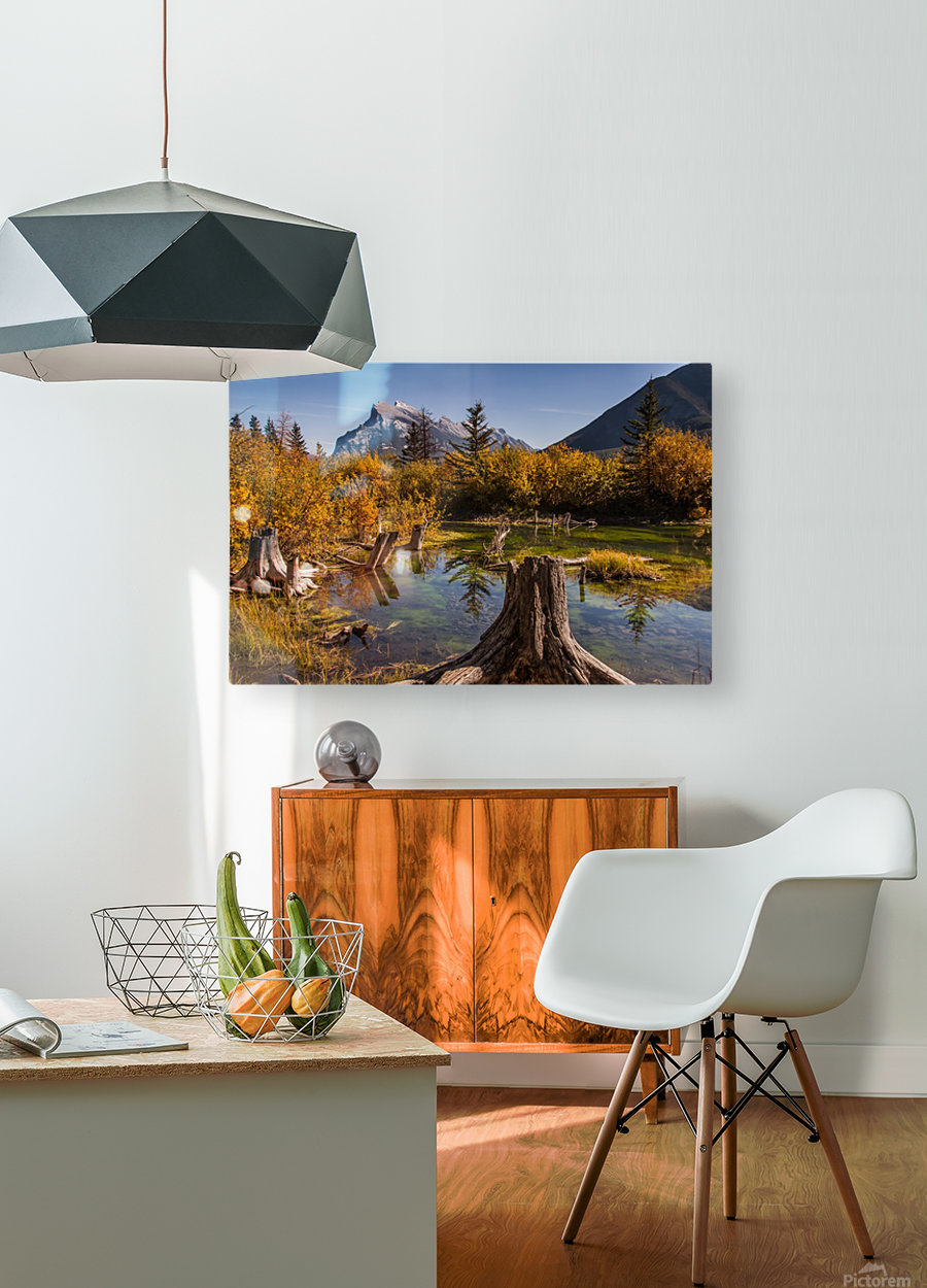 Vermilion Lakes Pond IMG_7045   HD Metal print with Floating Frame on Back