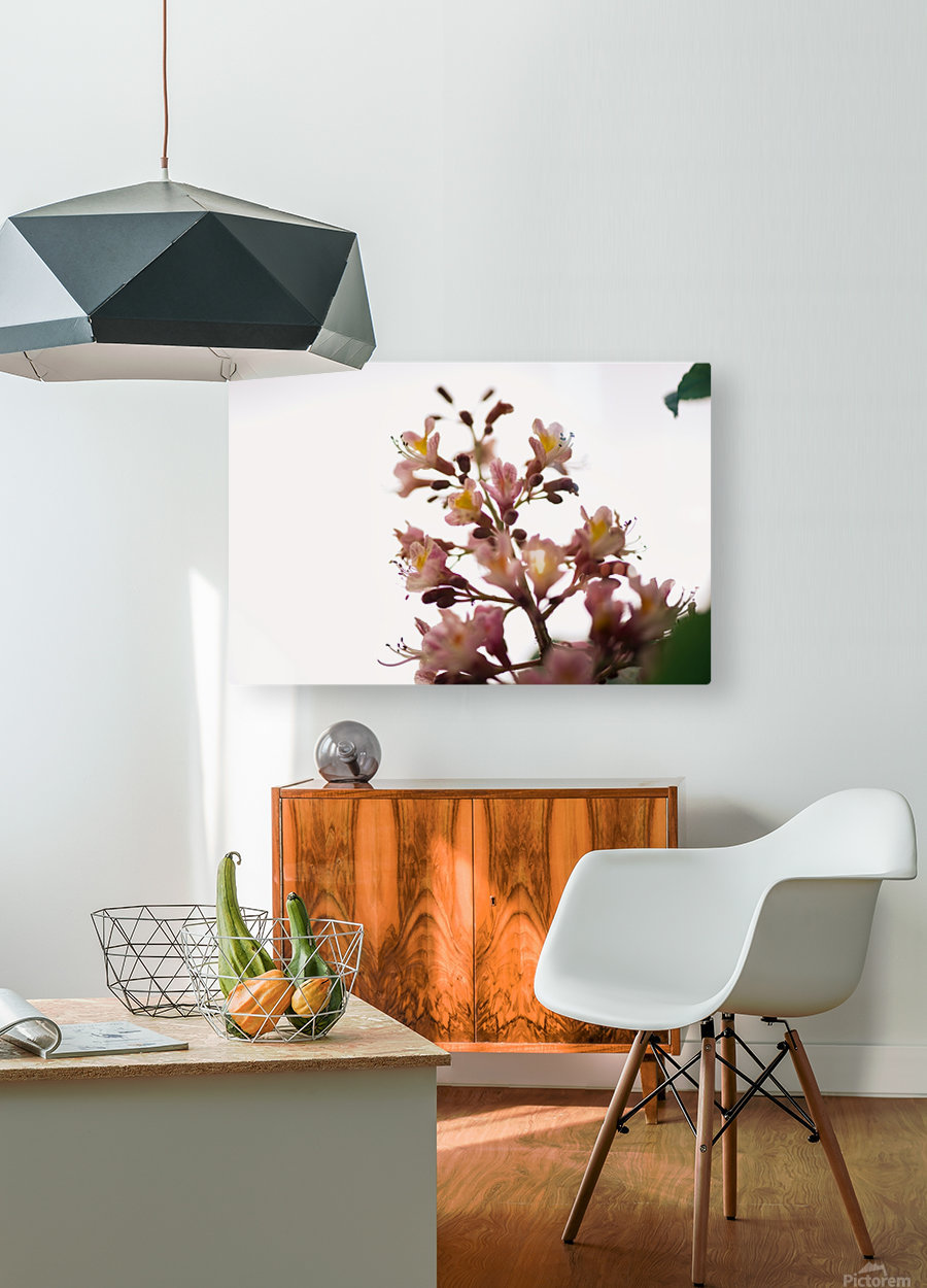 Wild Flowers 2  HD Metal print with Floating Frame on Back