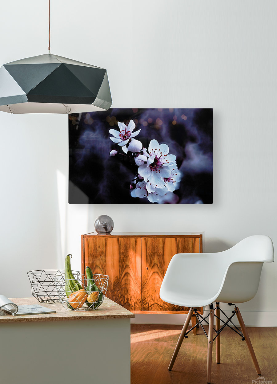 Night Flowers  HD Metal print with Floating Frame on Back