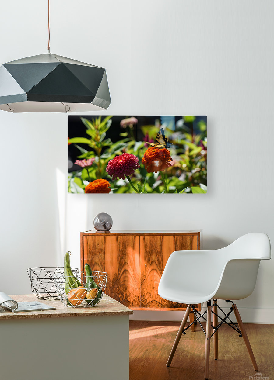 Gorgeous Flower Color  HD Metal print with Floating Frame on Back