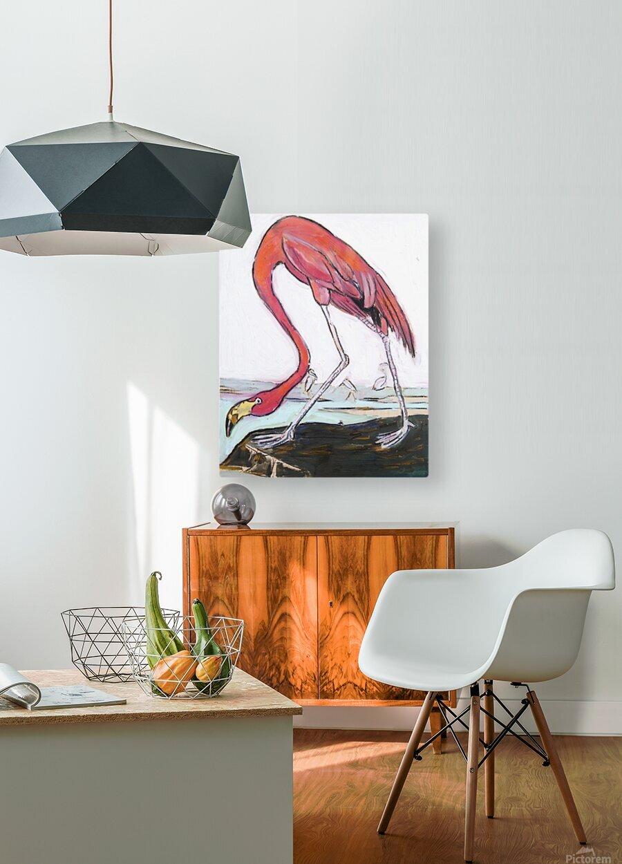 Louisiana Flamingo Study on Wood  HD Metal print with Floating Frame on Back