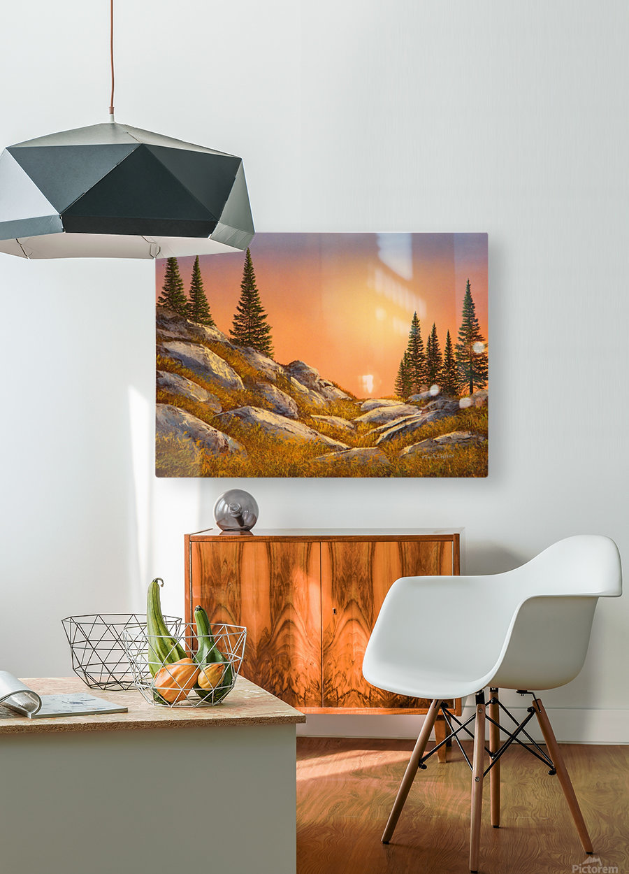 Sunset Spruces  HD Metal print with Floating Frame on Back