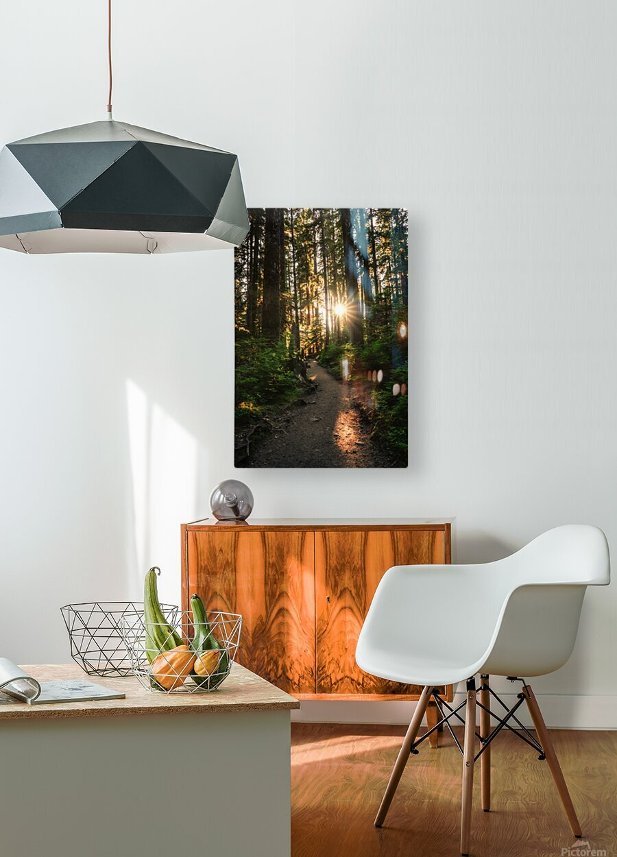 Wayfinder  HD Metal print with Floating Frame on Back