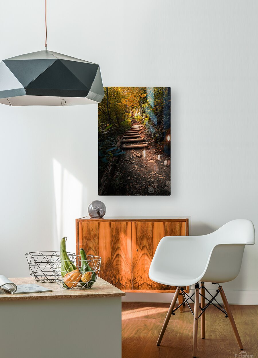 Climbing Colors  HD Metal print with Floating Frame on Back