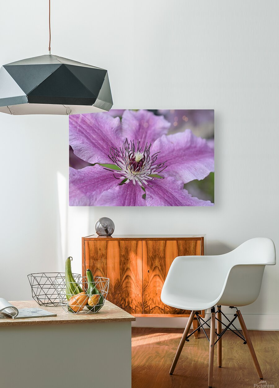 Pink Floral Photograph  HD Metal print with Floating Frame on Back