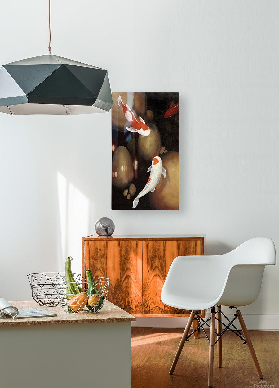 Koi  HD Metal print with Floating Frame on Back