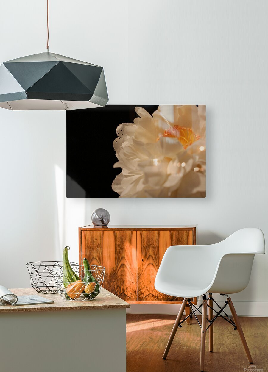 Anther  HD Metal print with Floating Frame on Back