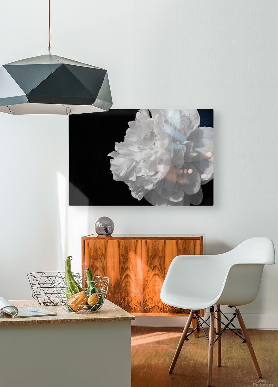 Stigma  HD Metal print with Floating Frame on Back