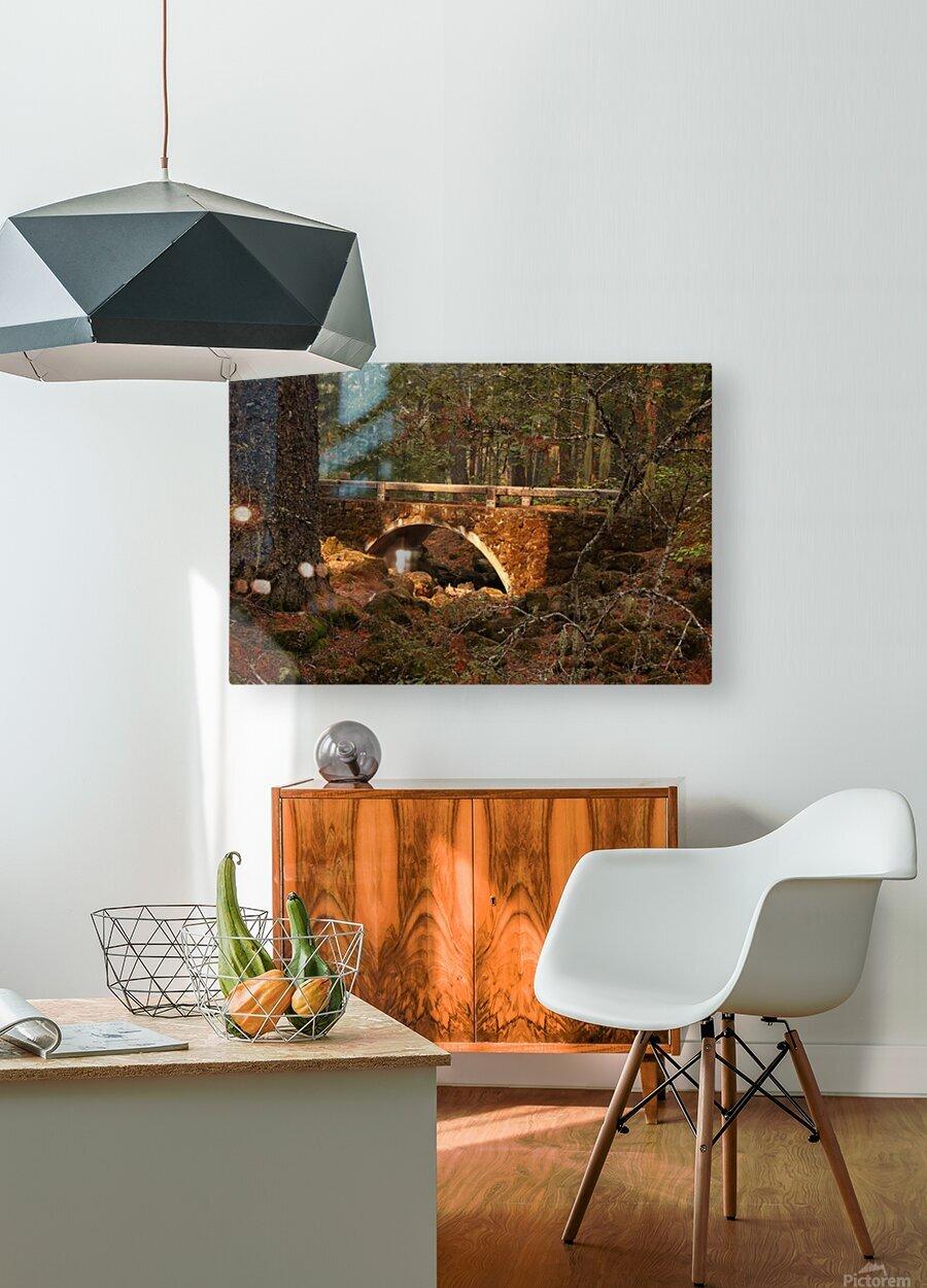 Troll Bridge  HD Metal print with Floating Frame on Back