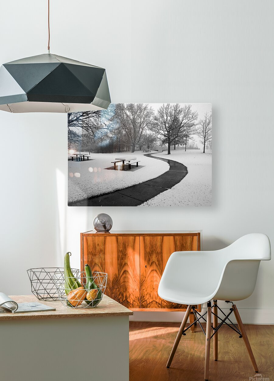 Winter Picnic  HD Metal print with Floating Frame on Back