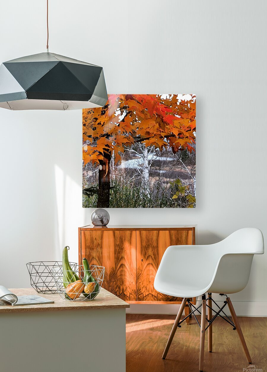 Autumn at Lake Superior  HD Metal print with Floating Frame on Back
