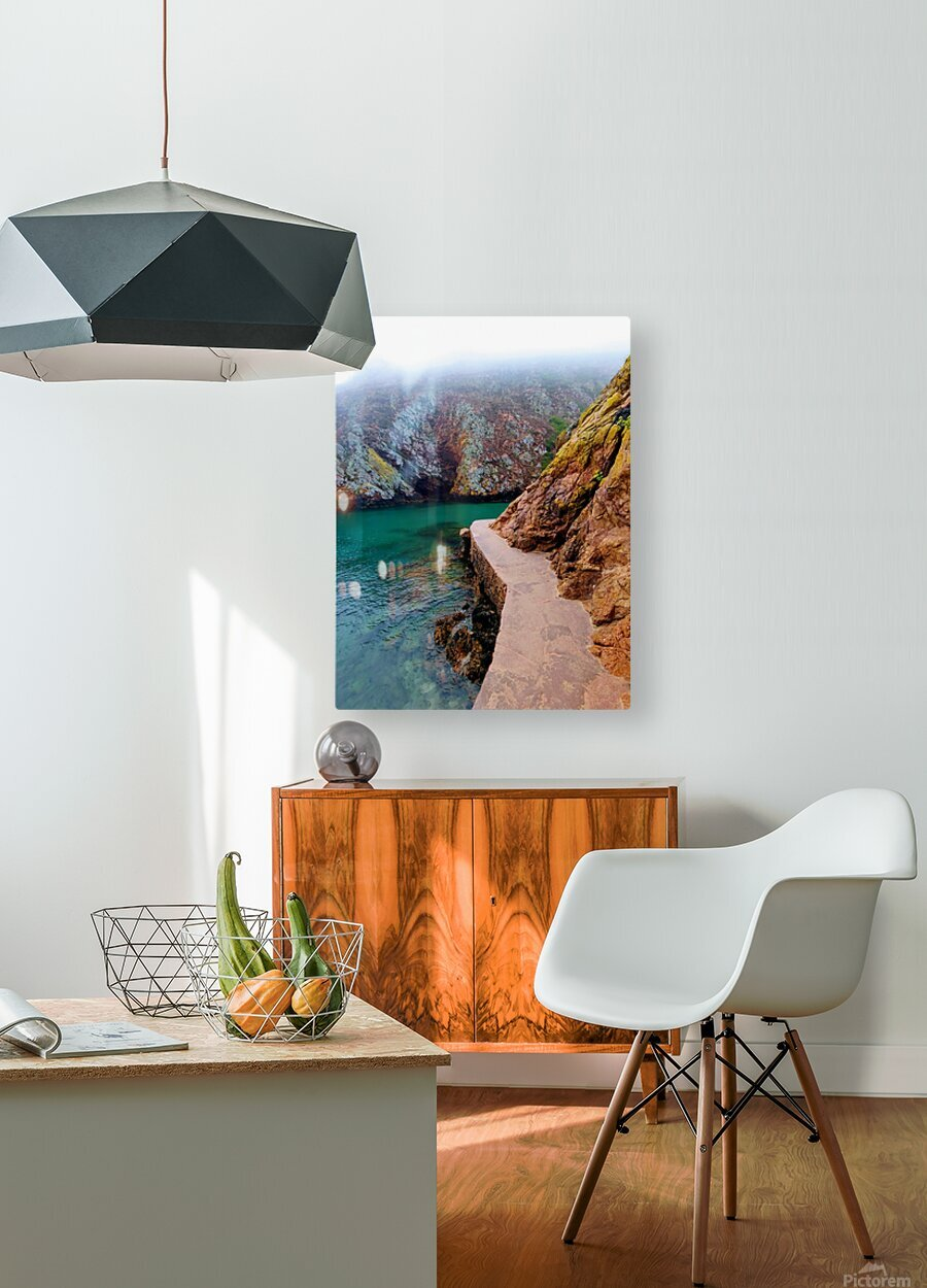 SEASIDE PATH  HD Metal print with Floating Frame on Back