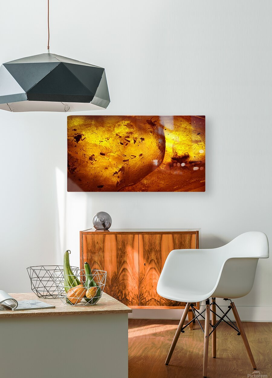 Ancient Insects Trapped in Amber  HD Metal print with Floating Frame on Back