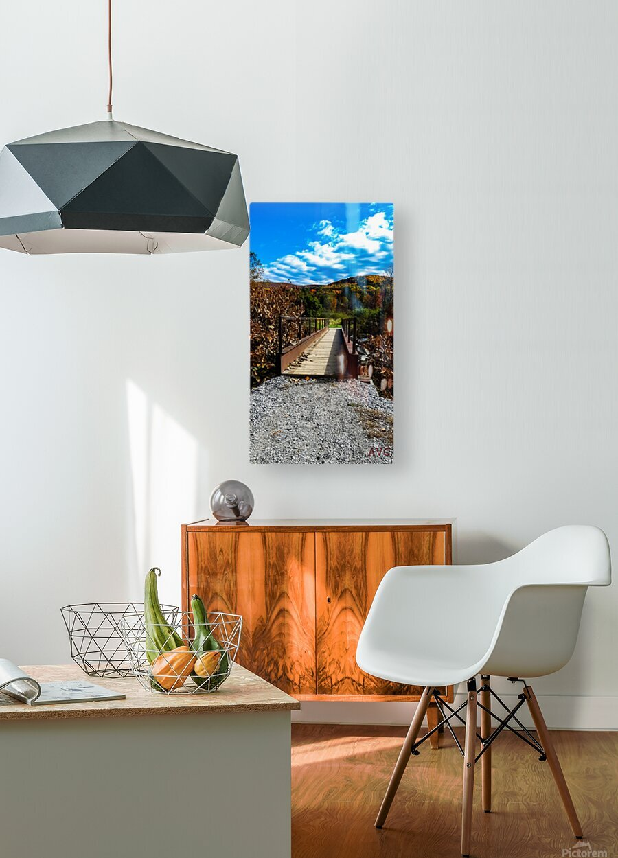 Rugby Pitch Bridge-- Autumn  HD Metal print with Floating Frame on Back