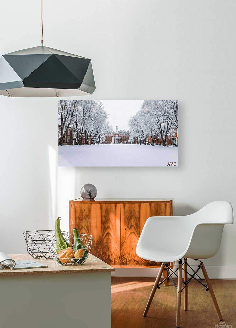 Upper Parade Ground- Winter  HD Metal print with Floating Frame on Back