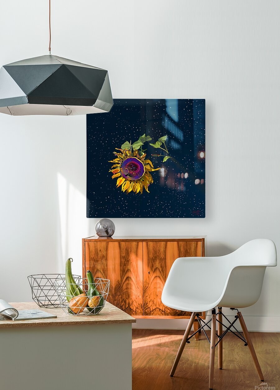 Sunflower in Space  HD Metal print with Floating Frame on Back