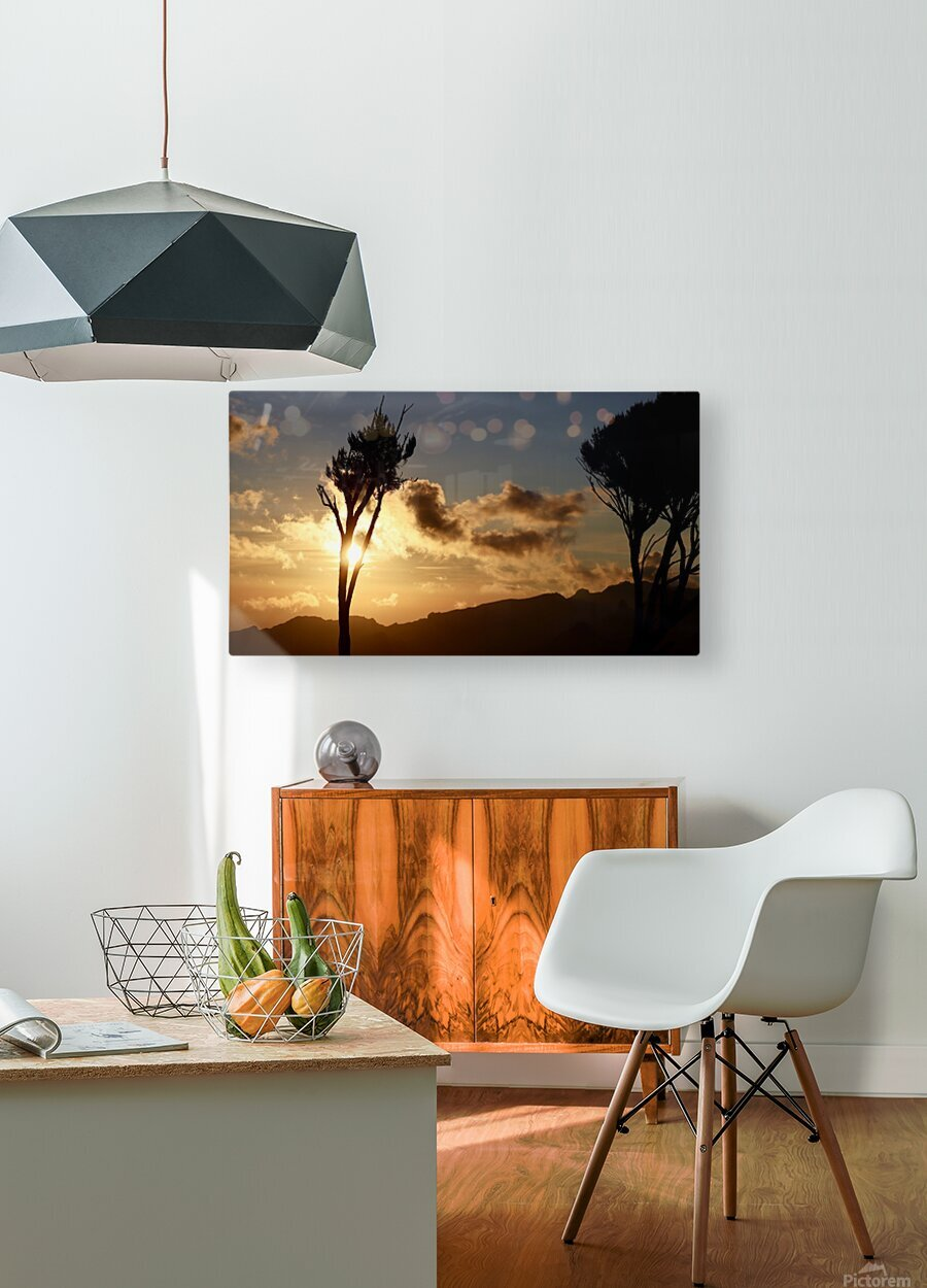 Wakanda Sunset  HD Metal print with Floating Frame on Back