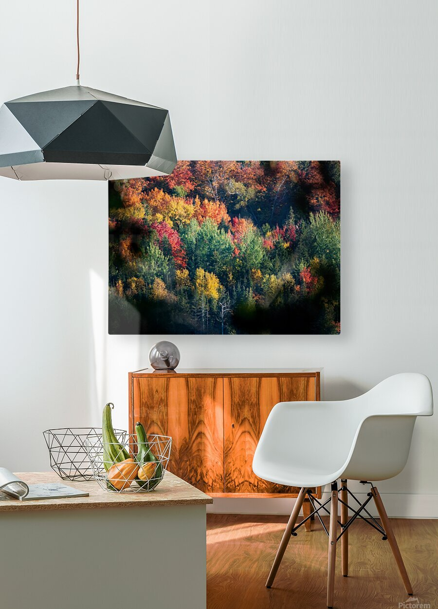 autumn abstract view  HD Metal print with Floating Frame on Back