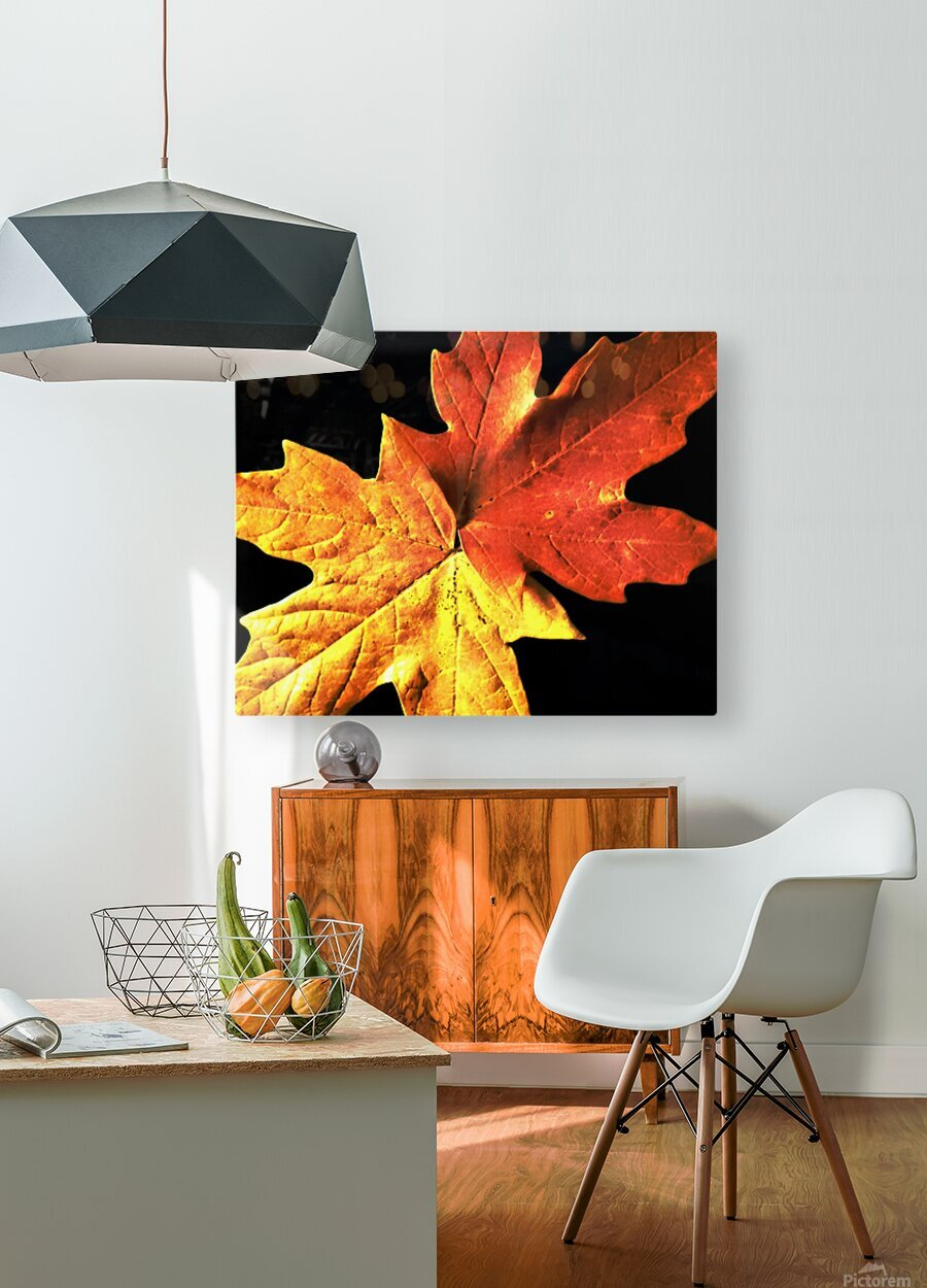 Fall Maple Leaves 3  HD Metal print with Floating Frame on Back