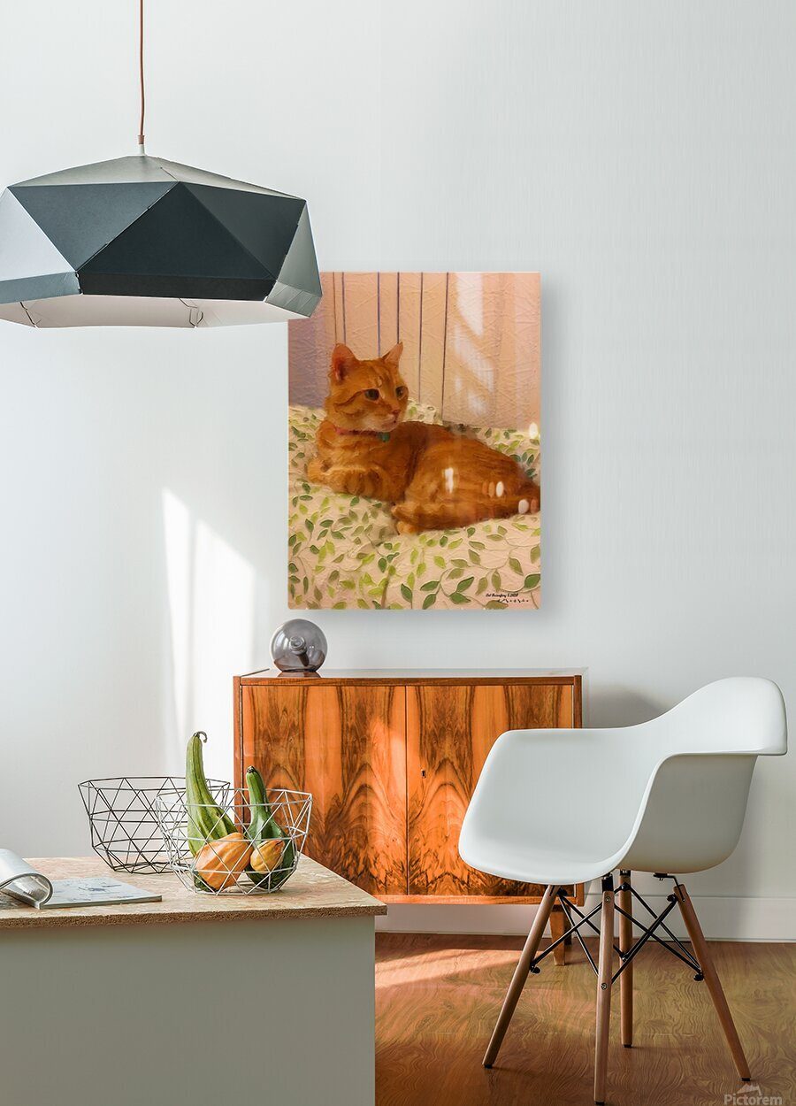 Cat  HD Metal print with Floating Frame on Back