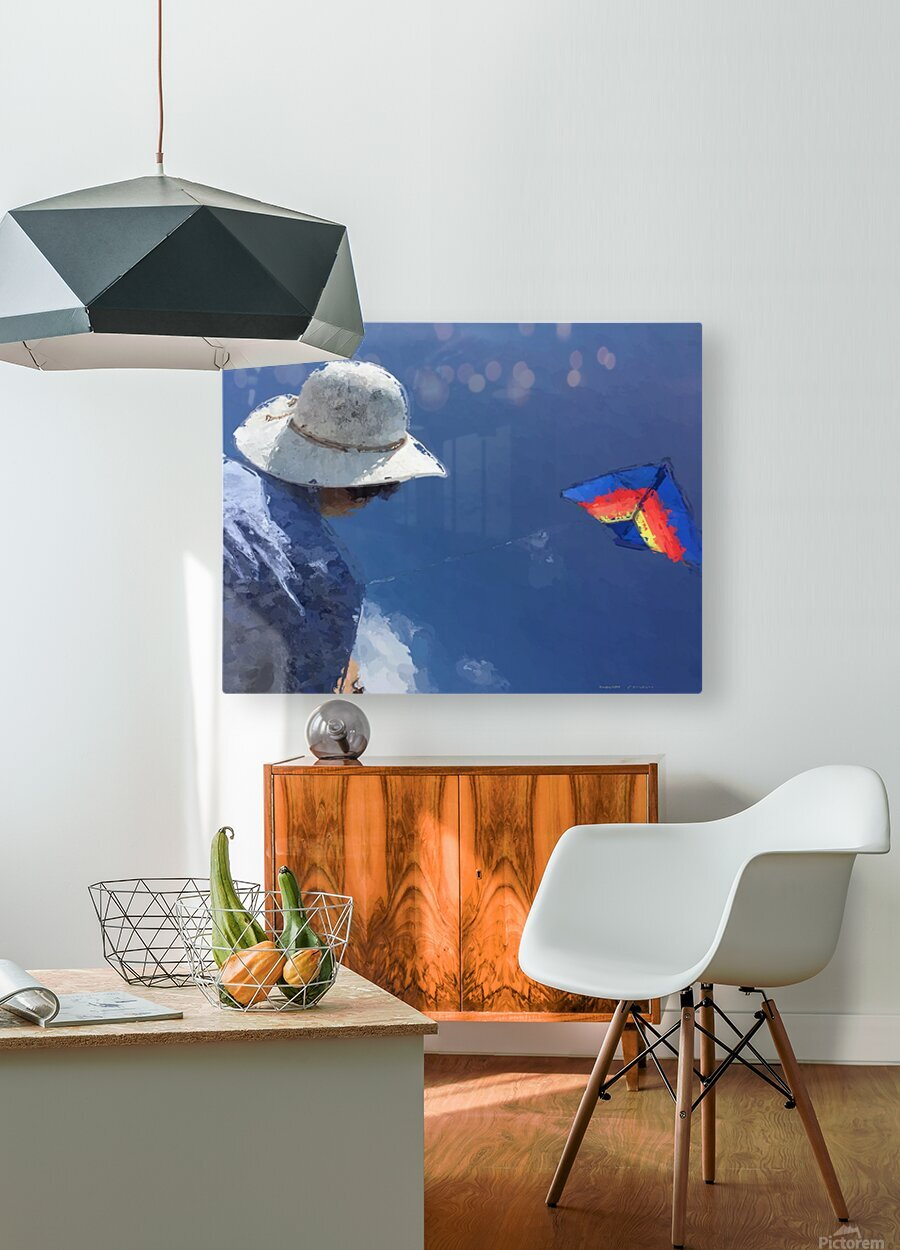 Kiting p  HD Metal print with Floating Frame on Back