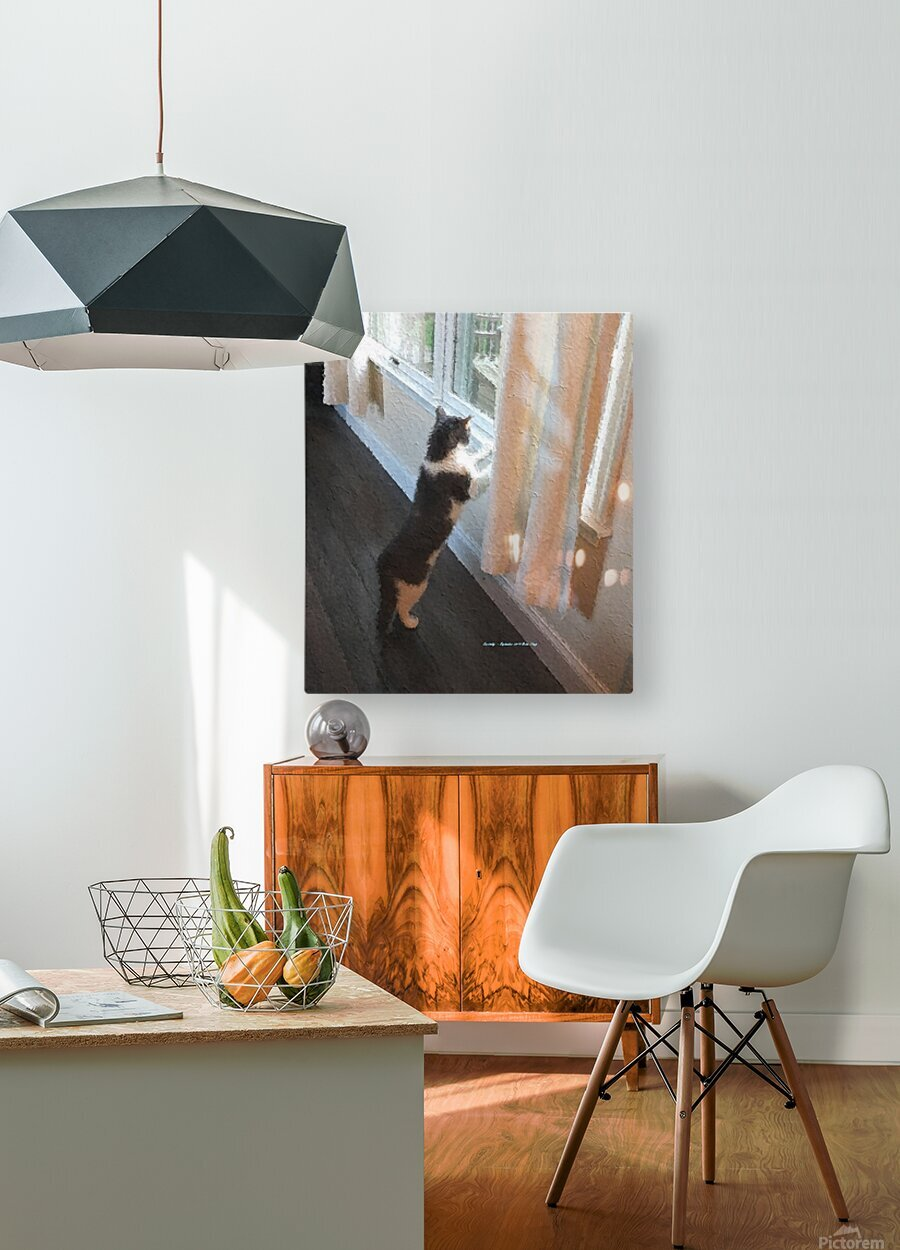 Curiosity  HD Metal print with Floating Frame on Back