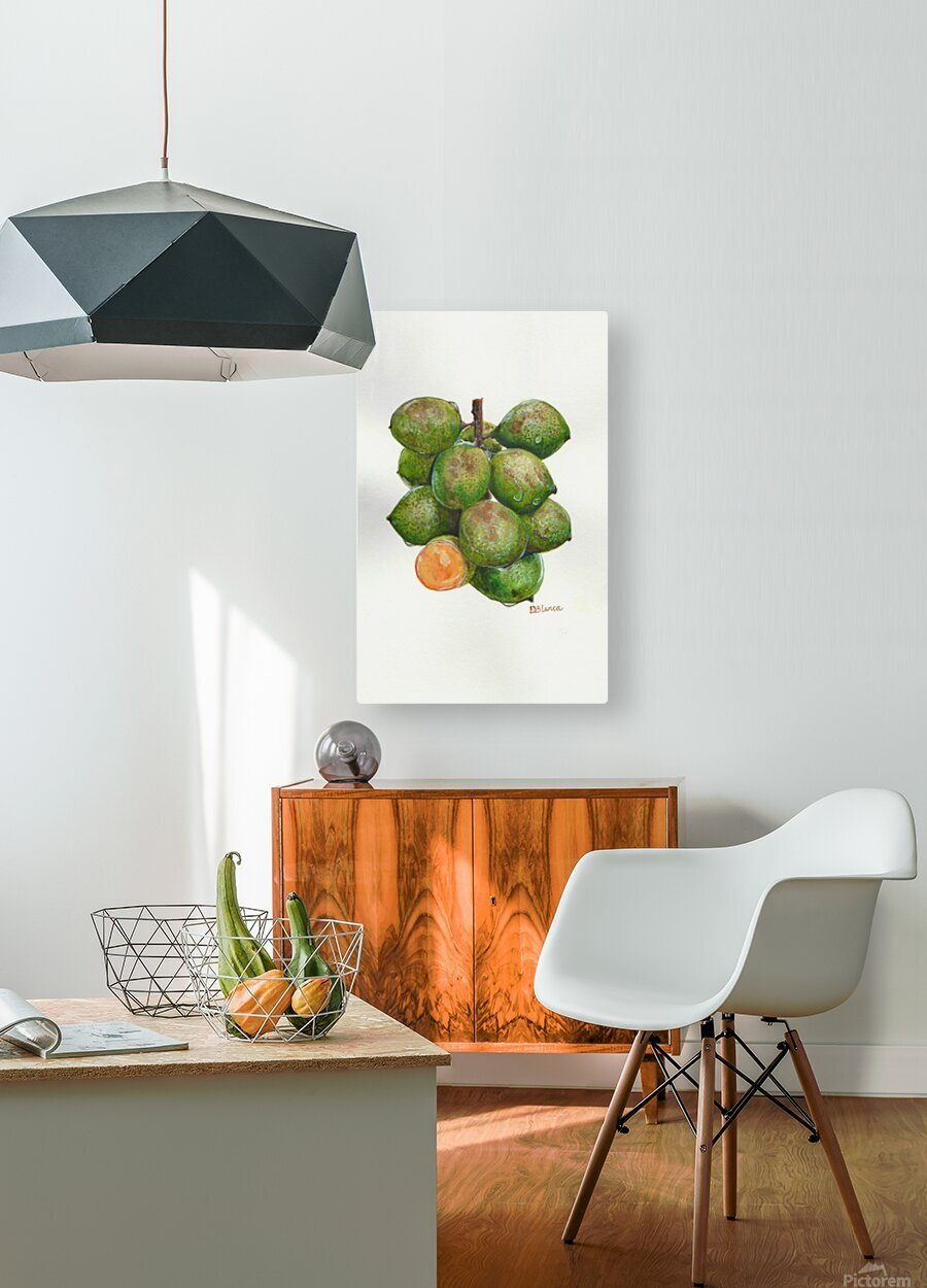 Spanish Lime  HD Metal print with Floating Frame on Back