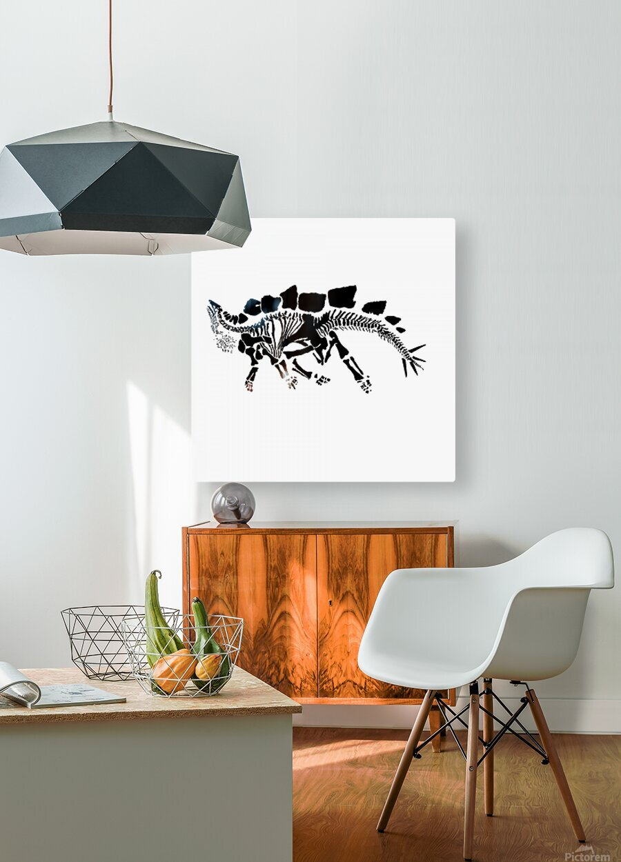 Fossil Stegasaurus  HD Metal print with Floating Frame on Back