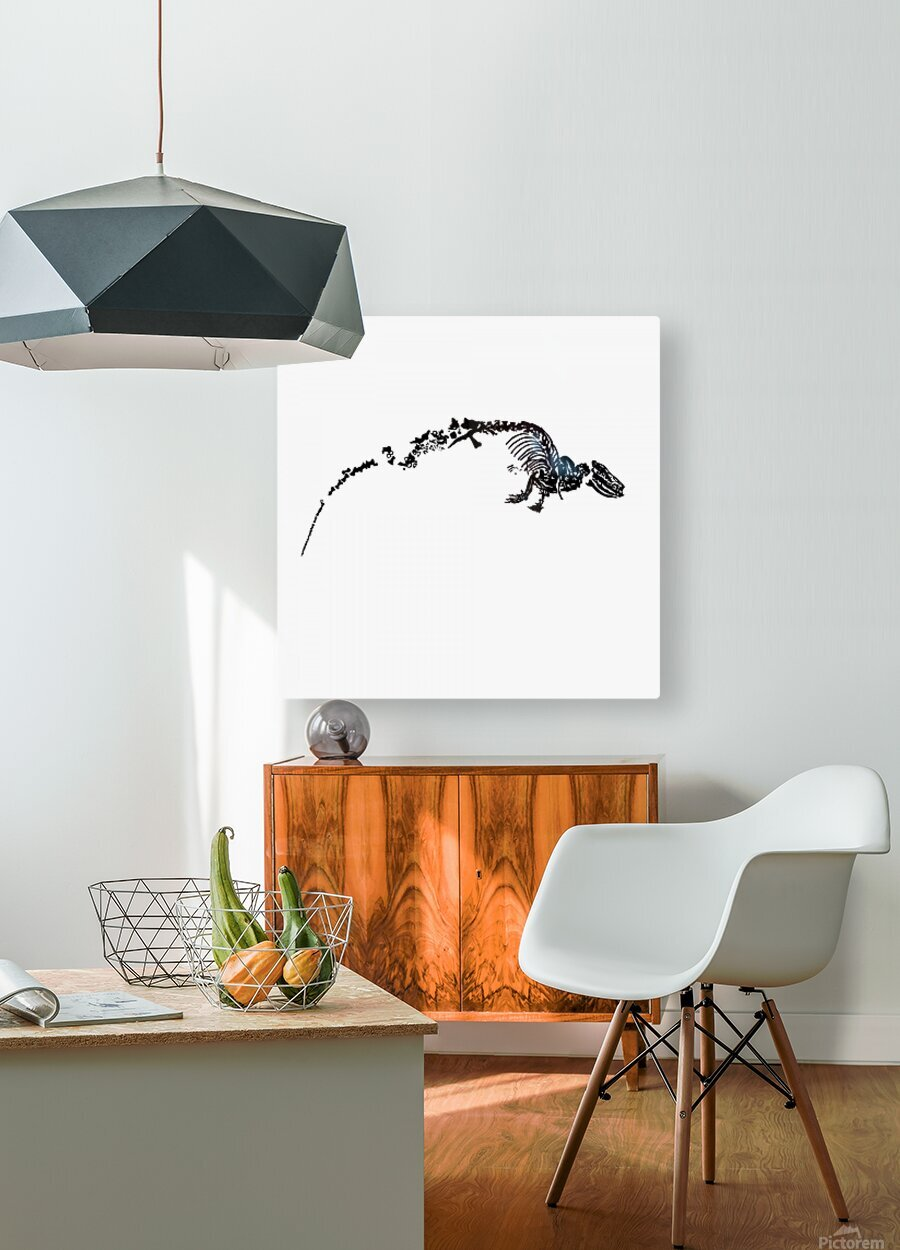 Fossil Dinosaur  HD Metal print with Floating Frame on Back