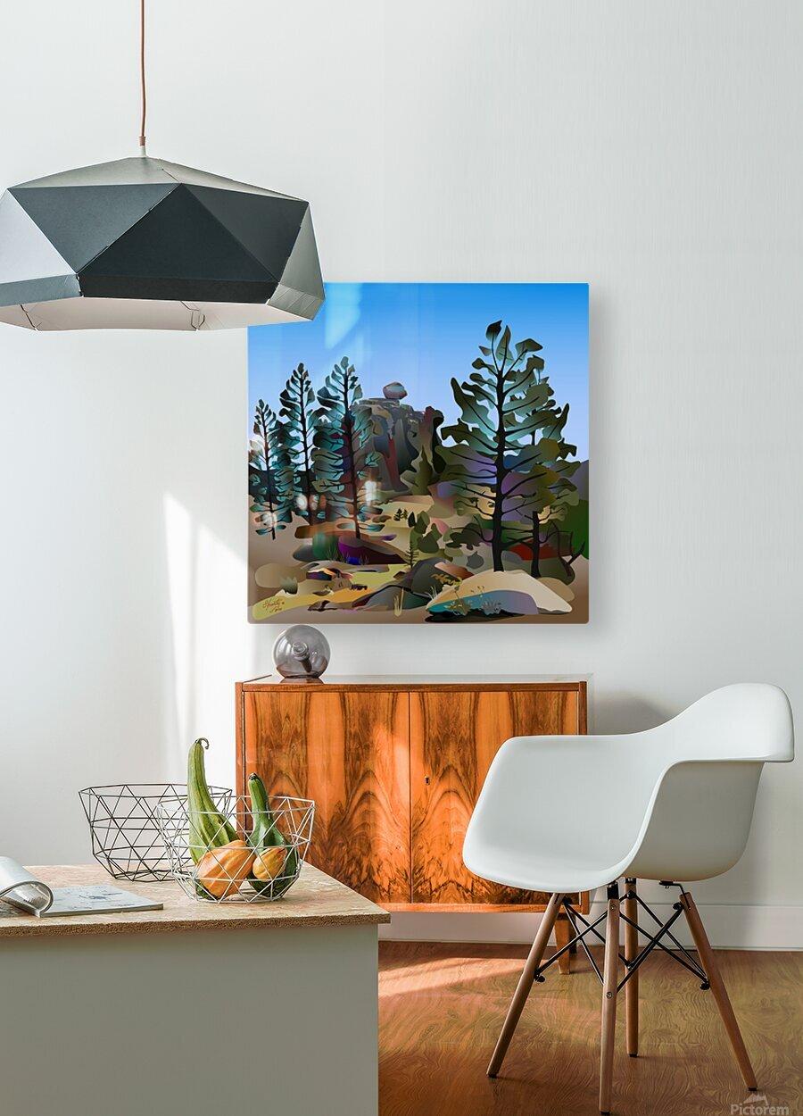 Balancing Boulder  HD Metal print with Floating Frame on Back