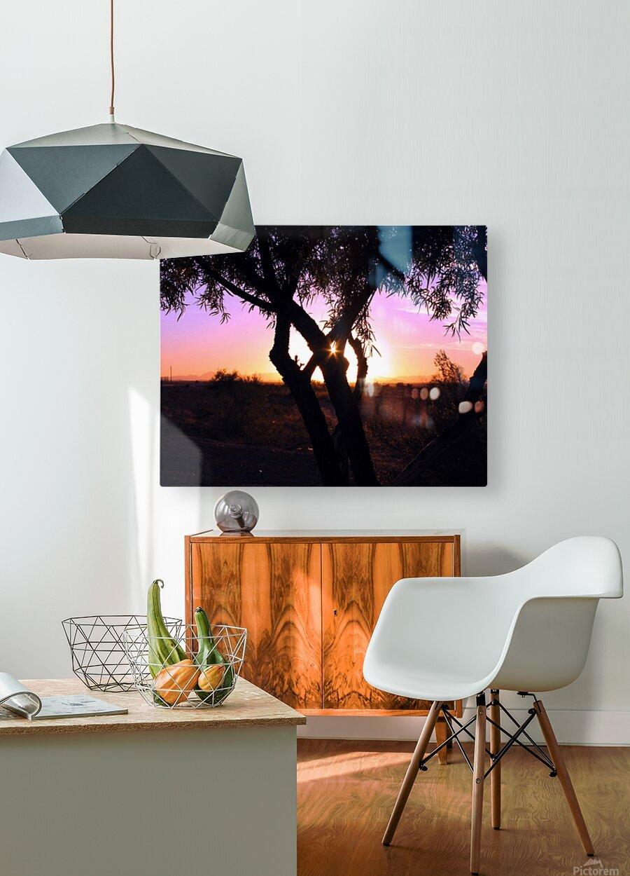 Tamarisk Sunset  HD Metal print with Floating Frame on Back