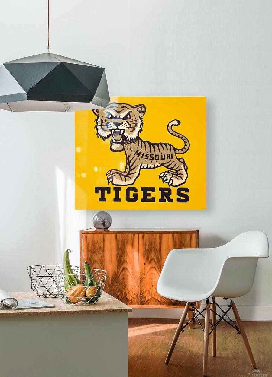 1950s Missouri Tigers Art Print  HD Metal print with Floating Frame on Back