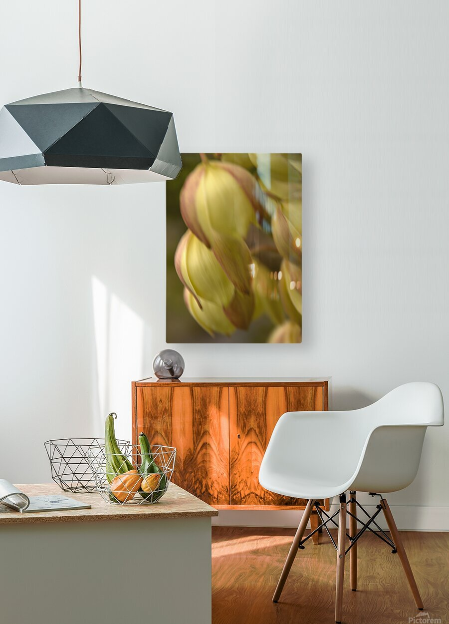 Beauty in a Gentle Breeze  HD Metal print with Floating Frame on Back