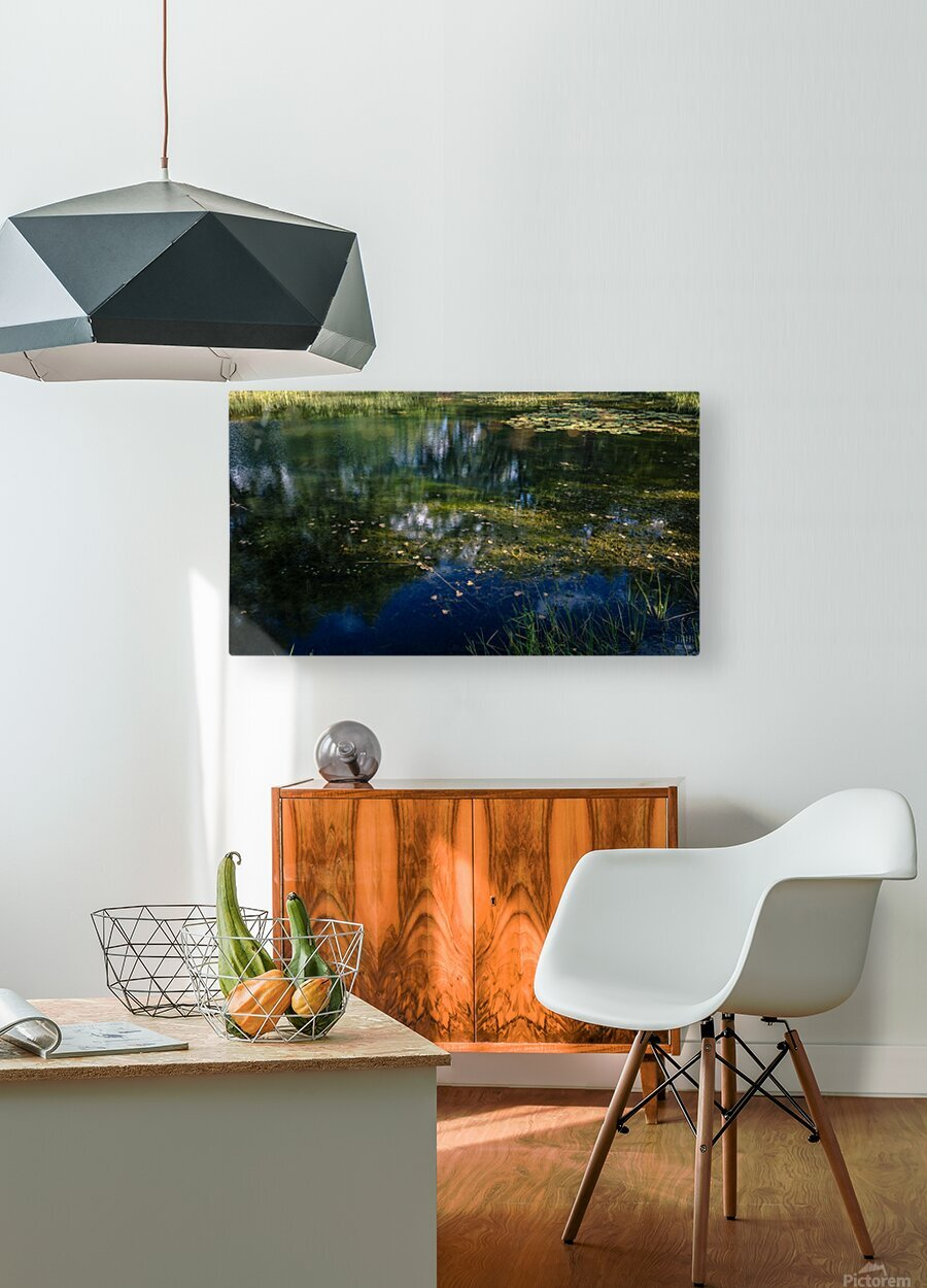 Monet style 3  HD Metal print with Floating Frame on Back