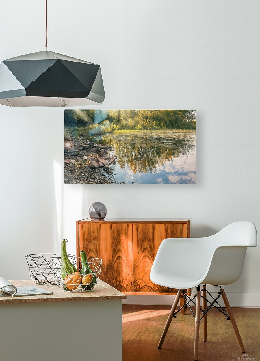 Monet style 4  HD Metal print with Floating Frame on Back